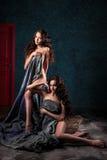 Jovens mulheres bonitas dos gêmeos com composição natural e o penteado que levantam despido coberto com o pano cinzento Foto de Stock