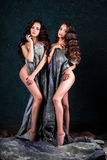 Jovens mulheres bonitas dos gêmeos com composição natural e o penteado que levantam despido coberto com o pano cinzento Imagem de Stock Royalty Free
