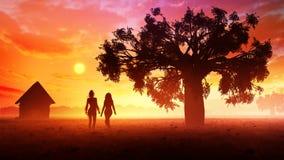 Jovens mulheres no por do sol do prado fotos de stock royalty free
