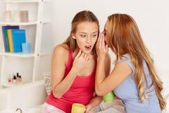 Jovens mulheres que bebem o chá e que bisbilhotam em casa Fotos de Stock
