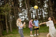 Jovens mulheres que jogam o voleibol no picnik na natureza da mola imagens de stock