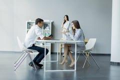 Jovens no escritório Imagem de Stock