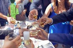 Jovens que têm o divertimento em um partido com vidros do champanhe Imagens de Stock Royalty Free