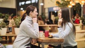 Jovens senhoras alegres com conversa do café no café acolhedor popular video estoque