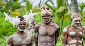 JOW V Asmats avec une peinture traditionnelle sur un visage, le chapeau du cuscus et les plumes de cacatoès J Image stock