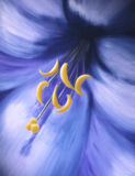 Joy abstract oil lily painting blue and yellow Stock Photos