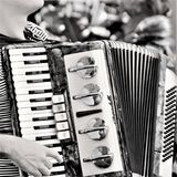 Joy and beauty in the Accordion. N254/5000nThe accordion is a harmonic wind musical instrument, composed of a bellows, a tenfão and two boxes of harmony of wood Royalty Free Stock Photography