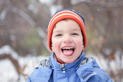 Joy of  first snow, winter Royalty Free Stock Images