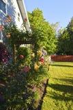 Joy of gardening. Stock Photo