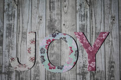 Joy Royalty Free Stock Image