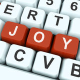 Joy Key Shows Fun Or Happiness Stock Photo