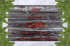 Joy, love, peace christmas pine tree and snow surface. White background on a bright cold morning day Stock Image