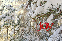 Joy Ornament dans Sunny Winter Forest Images stock