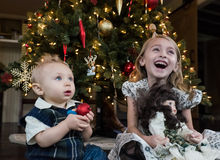 Joy to the World. A Bother and Sister Laughing in Front of the Christmas Tree royalty free stock image