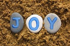 Joy Royalty Free Stock Photo
