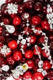 Joyas en las cerezas Foto de archivo