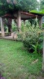 Joydebpur Banglobari. Bangaalow in Bangladesh joydebpur Stock Images