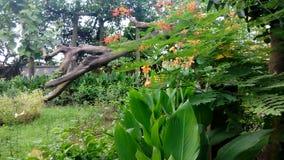 Joydebpur Banglobari. Bangaalow in Bangladesh joydebpur Royalty Free Stock Photos