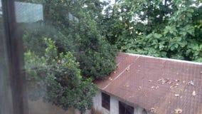 Joydebpur Banglobari. Bangaalow in Bangladesh joydebpur Stock Image