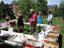 Joyería para la venta en el mercado de pulgas Fotos de archivo libres de regalías