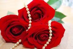 Joyería de la perla fijada en rosas rojas Imagen de archivo libre de regalías