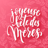 Joyeuse Fete des Meres greeting card. Joyeuse Fete des Meres. Mother Day  greeting card. Mothers day pink red floral pattern background. Mother Day hand drawn Stock Photos