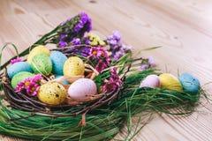 Joyeuses Pâques le fond a coloré le vecteur rouge de tulipe de format des oeufs de pâques eps8 Les oeufs colorés lumineux dans le Photos stock
