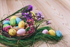 Joyeuses Pâques le fond a coloré le vecteur rouge de tulipe de format des oeufs de pâques eps8 Les oeufs colorés lumineux dans le Images libres de droits