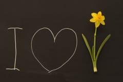 Joyeuses Pâques sur le tableau noir Image libre de droits
