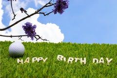 Joyeux anniversaire au golfeur Photos libres de droits