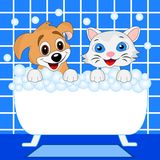 Joyeux bain de chaton et de chien dans le bain Image stock