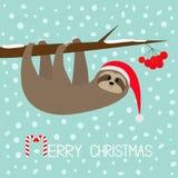 Joyeux Noël L'animal de paresse accrochant sur la sorbe de sorbe absorbent la branche d'arbre de baie Santa Hat An neuf heureux B illustration libre de droits