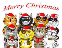 Joyeux Noël Santa Cats Greetings Photographie stock