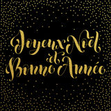 Joyeux Noel, Bonne Annee french greeting card, poster Royalty Free Stock Photography