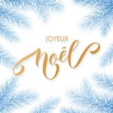 Joyeux Noel French Merry Christmas trendy golden calligraphy and fir branch wreath on white frozen blue frost background for winte. R holiday design. Vector New Royalty Free Stock Image