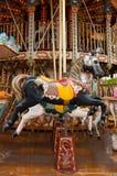 Joyeux vont le cheval de rond Images stock