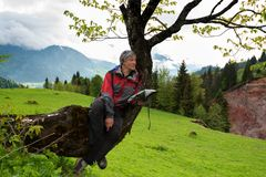 Joyful adventurer with map sits on a tree. In the middle of a green mountain meadow and looking into the distance. Epic travel in the mountains, Georgia Royalty Free Stock Photos