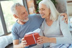 Joyful aged couple holding a birthday present. Happy anniversary. Waist up of a joyful loving elderly couple holding a present and resting at home while having a Stock Photo