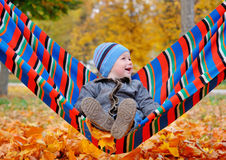 Joyful baby boy in autumn park on a hammock Stock Photography
