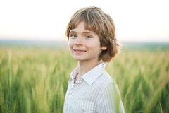 Joyful boy against a wheat field Stock Photos