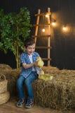 Joyful boy in a blue clothes holding a gosling on farm Royalty Free Stock Photos