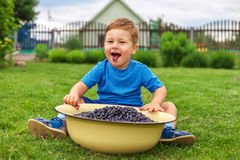 Joyful boy sitting on green grass and eating blueberries Stock Images