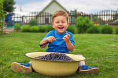Joyful boy sitting on green grass and eating blueberries Royalty Free Stock Photos