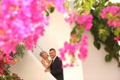 Joyful bridal couple embracing near colorful flowers Royalty Free Stock Photo