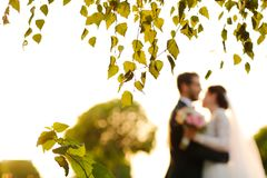 Joyful bride and groom with bouquet embracing Stock Photography