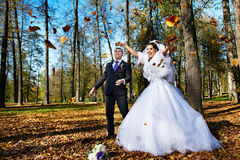 Joyful bride and groom iand falling leaves Stock Image