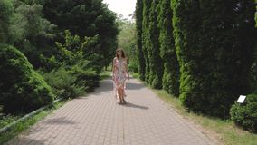 Pretty Woman In A Dress Walking On Alley Of Decorative Trees On A Summer Day. Joyful caucasian brunette woman in a beautiful dress and sandals walking along the stock footage