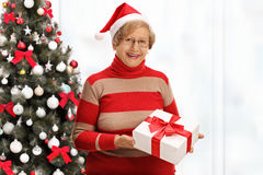 Joyful elderly woman holding christmas present in front of chris Stock Image