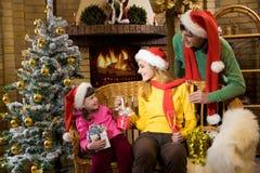 Joyful family Royalty Free Stock Photography