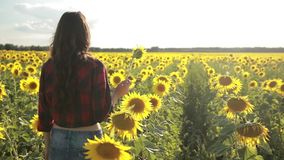 Joyful girl with sunflower enjoying nature stock video